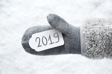 Wool Glove, Label, Snow, Text 2019
