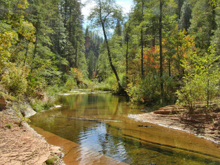 View in West Fork of Oak Creek Canyon at Sedona
