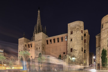 Cathedral of Barcelona in the night