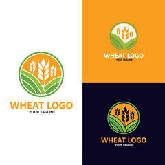 luxury grain, Agriculture wheat grain Logo Template vector icon design