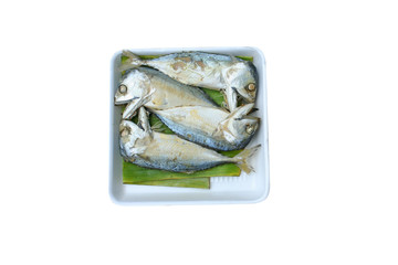 Steamed mackerel on white foam dish