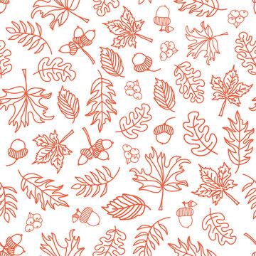 Seamless vector doodle leaves background. Orange leaves on white background. Acorn, oak tree, maple tree pattern. Monochrome doodle leaf print. Fall background, Thanksgiving, Seasonal print, November