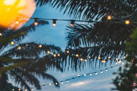 blurred light bokeh with coconut palm tree background on sunset