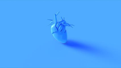 Blue Anatomical Heart Concept 3d illustration 3d render