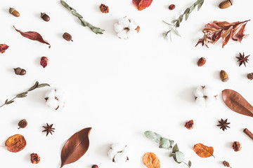 Autumn composition. Frame made of eucalyptus branches, cotton flowers, dried leaves on white background. Autumn, fall concept. Flat lay, top view, copy space
