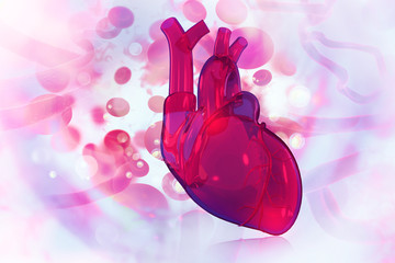 Human heart on scientific background