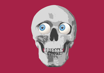 tête de mort - humour - regard - expression - yeux - crâne - humoristique - regarder - affiche