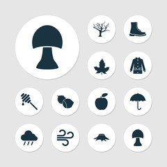 Seasonal icons set with mushroom, hazelnut, wind and other tree