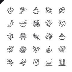 Thin line spices, condiments and herbs icons set for website and mobile site and apps. Outline icons design. 48x48 Pixel Perfect. Linear pictogram pack. Vector illustration.
