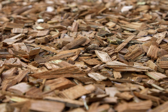 Decorative bark, mulch, mulching. Decorative wood chips. Natural pine mulch brown colored for protecting plants on flower beds and lawns. Edges of the photo are blurred. Medium size.