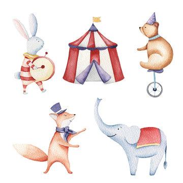 Circus watercolor illustration, elephant, bunny, fox, birds
