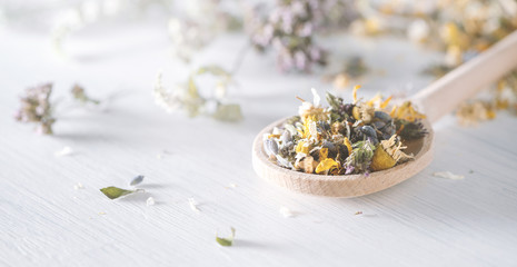 Mix of dried medical herbs and blooms on a wooden spoon. Homeopathy concept