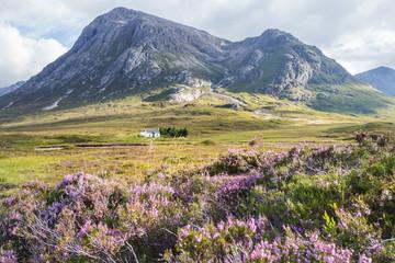 Solitary small home in Scottish Highlands near Glencoe, Scotland, UK