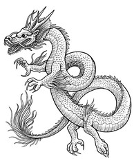 Asian dragon illustration, drawing, engraving, ink, line art, vector