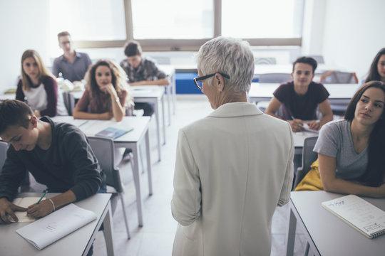 Teacher Teaching a Lesson
