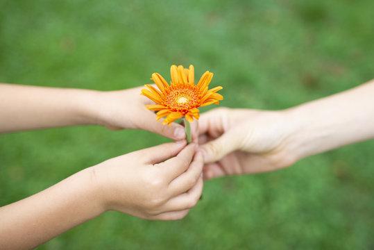 花を手渡す親子