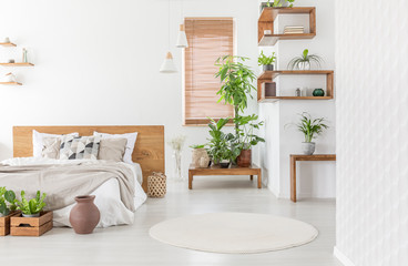 Real photo of a cozy bedroom interior with plants, double bed, round rug and wooden accents