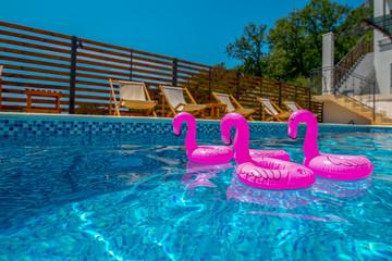 stado małych dmuchanych różowych flamingów na basenie
