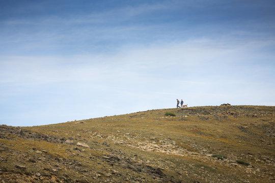 Couple walking their dog on a mellow ridge in Colorado.
