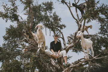 Woman and goats on tree