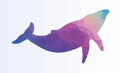 Polygonal Whale