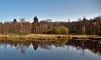 Herbstidylle am Roten Moor
