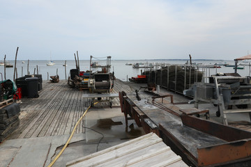 shellfish oysters farm industry cages worker place farmers food market