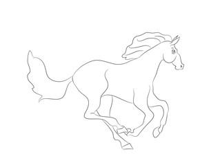 horse running, lines, vector