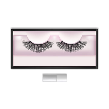 Realistic Detailed 3d False Eyelashes in Package Box. Vector