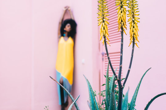 Yellow aloe flower with a blur woman