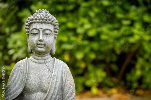 peaceful buddha in green garden\