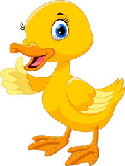 Cute duck cartoon thumb up.