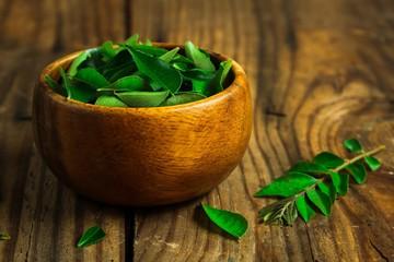 Fresh Curry leaves still life on  dark moody background