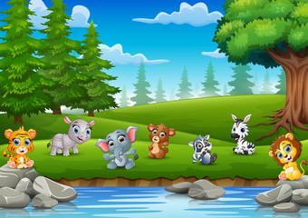 The little animals are enjoying nature by the river