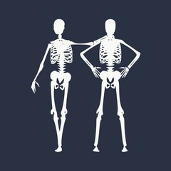 Human skeleton standing and hugging. Halloween party design template. Friends embrace