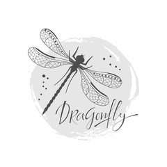 Background with decorative dragonfly