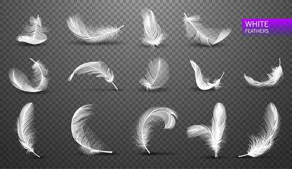 Set of isolated falling white fluffy twirled feathers on transparent background in realistic style. Vector Illustration Fototapete