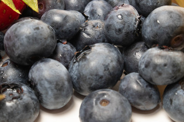 Close up Blueberries 4