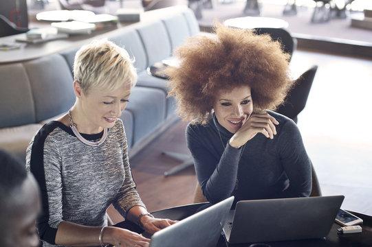 Two business women using laptops