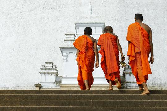 monks coming in ruwanwelisaya stupa in anuradhapura historical parc ,Sri Lanka