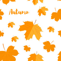 Seamless pattern. Autumn yellow leaves