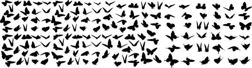 蝶々のシルエット