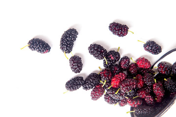 White cup with black mulberry fruit isolated on white