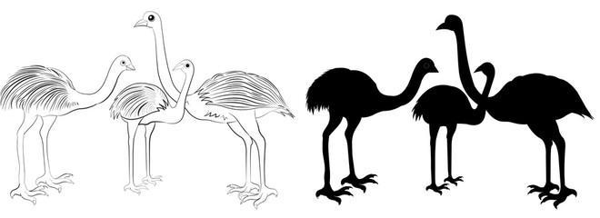 Wild animals silhouette, ostrich