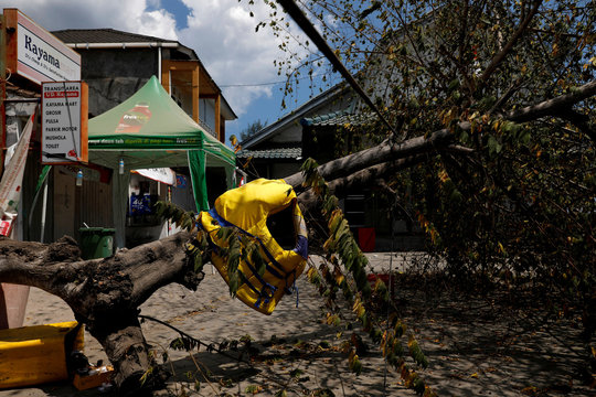 A life jacket stranded on a fallen tree is seen after earthquake hit on Sunday at the Bangsal port in Pemenang