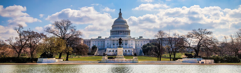US Capitol 8 (Banner)