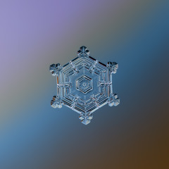 Snowflake glittering on smooth gradient background. Macro photo of real snow crystal: star plate with glossy surface, hexagonal symmetry, six short, broad arms and complex inner pattern.