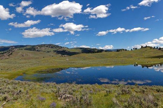Teich im Lamar Valley