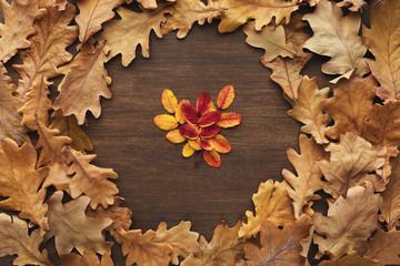 Fall oak leaves pattern background