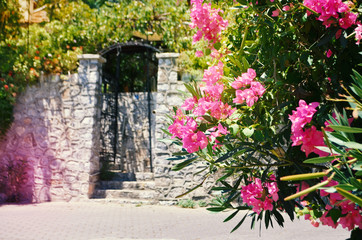 Typical Mediterranian outdoor street exterior in summer. Bougainvillea flowers blooming